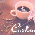 カルダモンコーヒーの作り方 コーヒーが苦手な人でも飲めるかも?